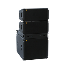 Vera20 Dual 10'' 2 Way Line Array Speaker